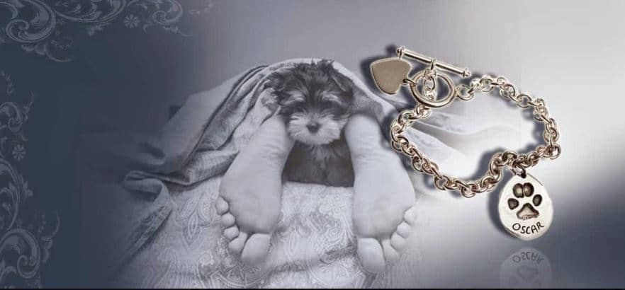 pet paw print charm on tiffany style bracelet with puppy and owner