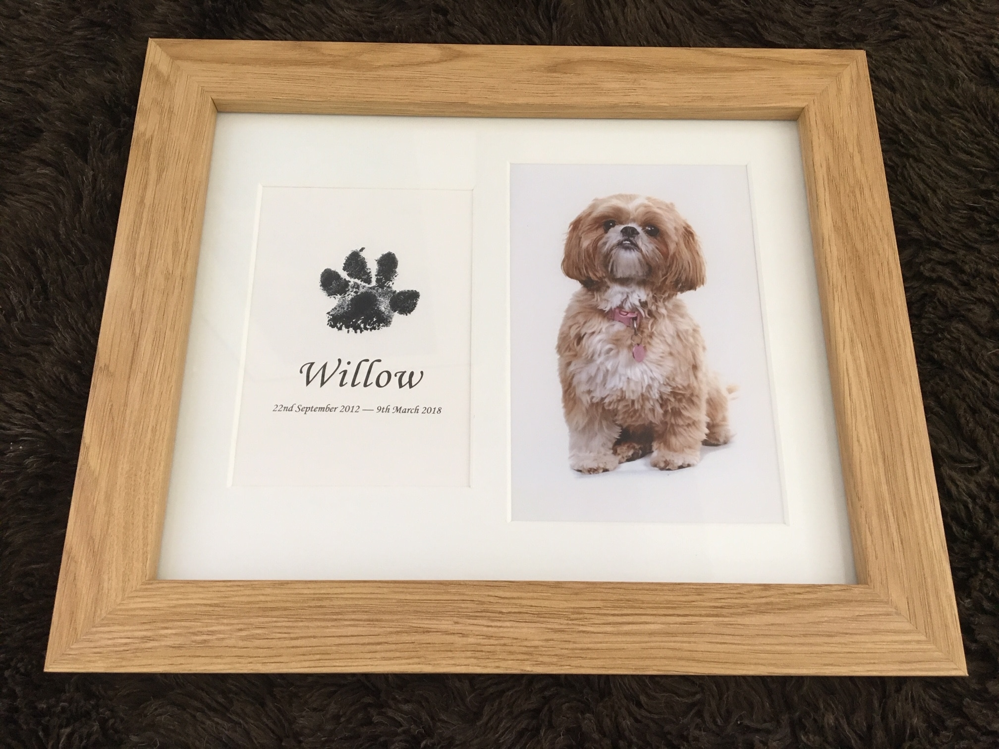 pet paw print in a wood frame using inkless wipe
