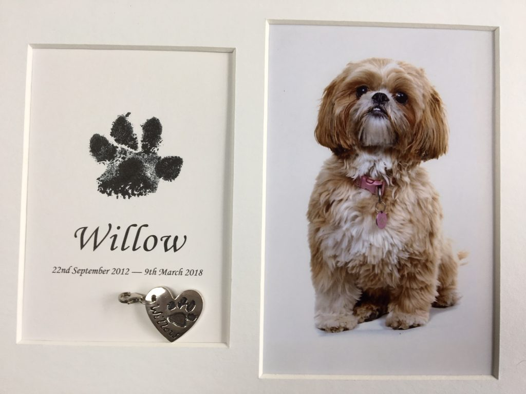 deceased pet paw print in a frame using inkless wipe wood with pawprint silver heart charm