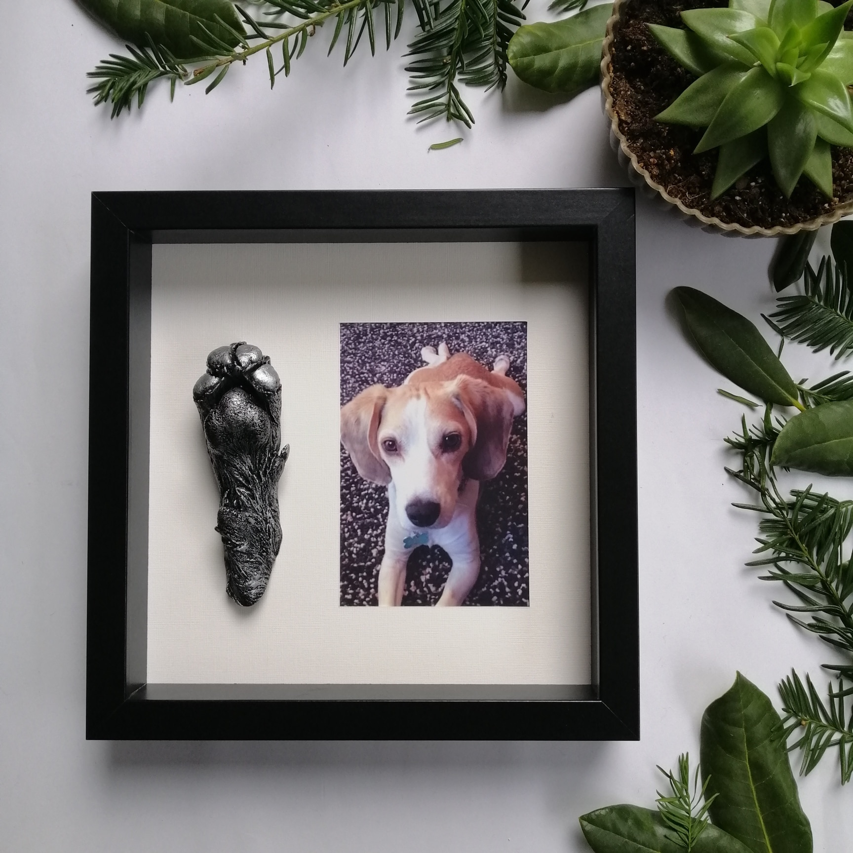 3D Dog Cast in Poole, Dorset