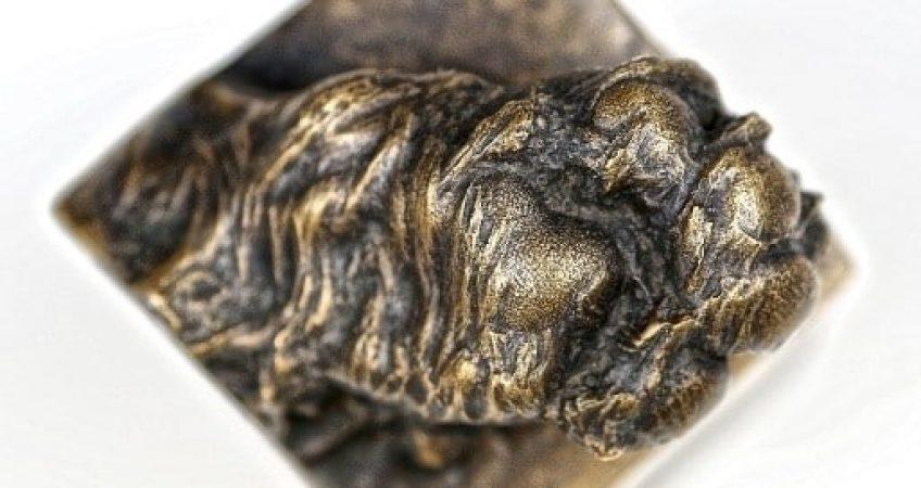 3D pet paw cast in solid bronze